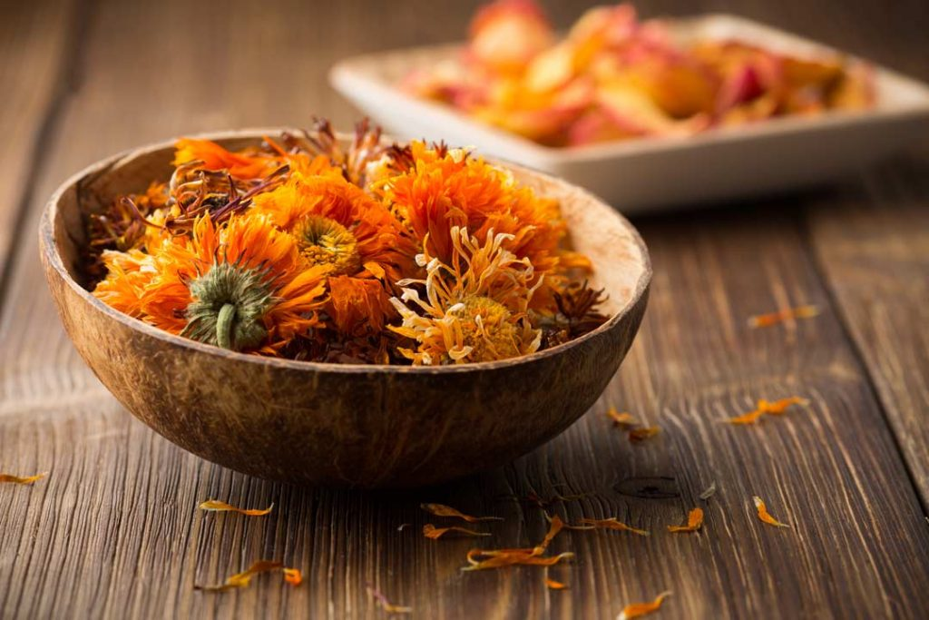 Calendula flowers in a bowl for facial cream